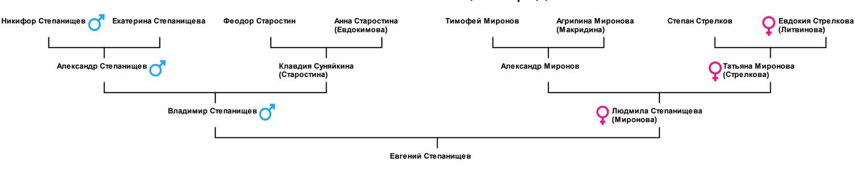 Распространение митохондриальной ДНК (68.19КиБ)